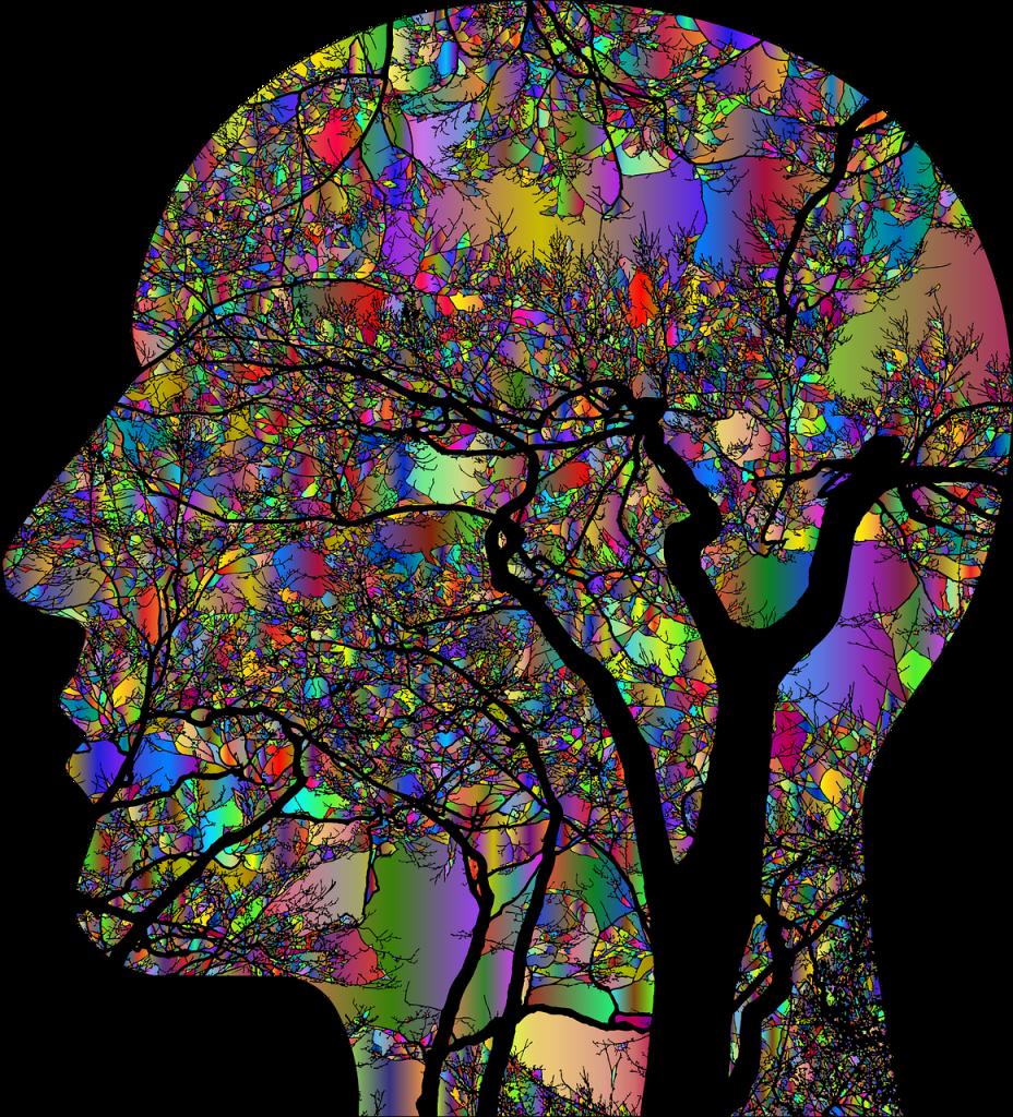 brain, think, psychology-4866447.jpg